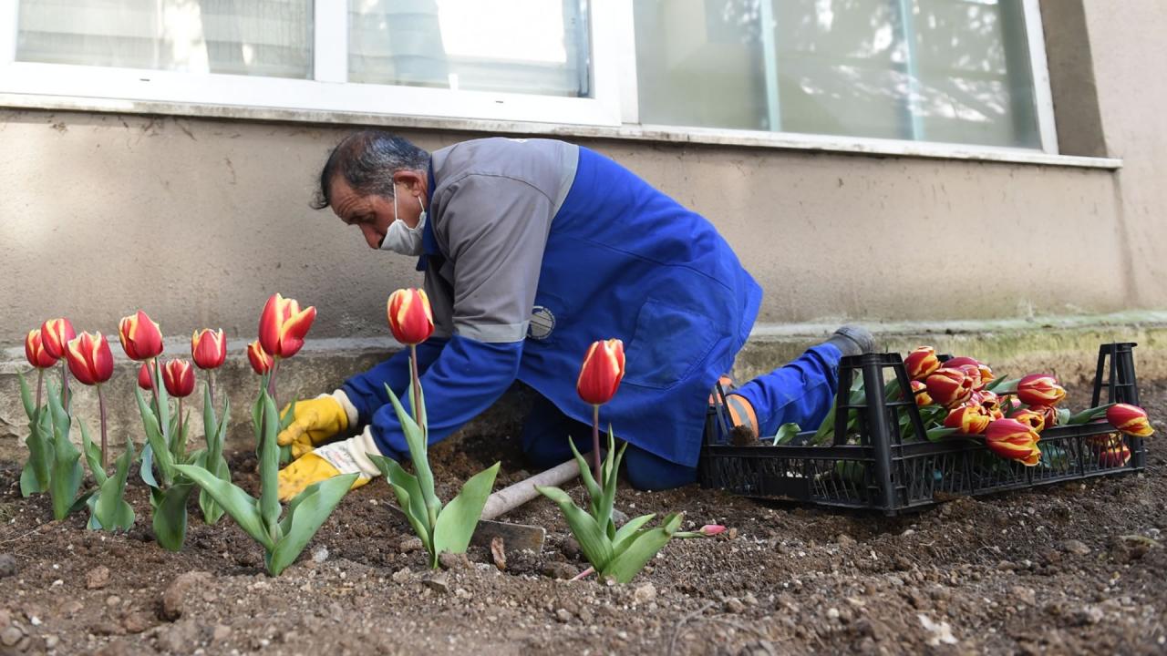 Ankarada sağlık çalışanlarına rengarenk moral...